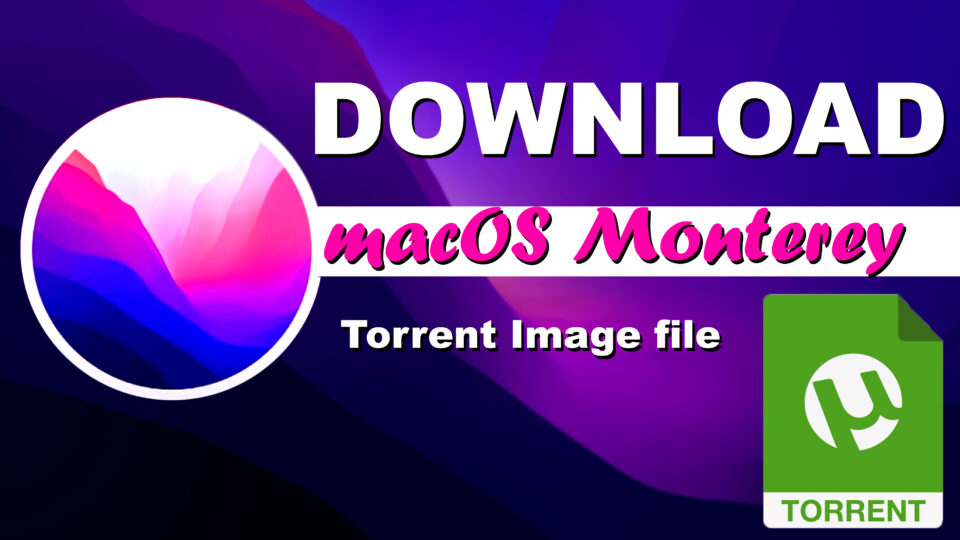 Download macOS Monterey Torrent Image Files For Free